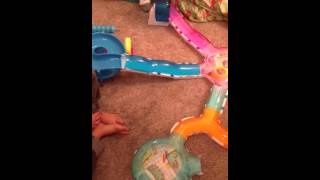 Girls hambsters on zuzu toys