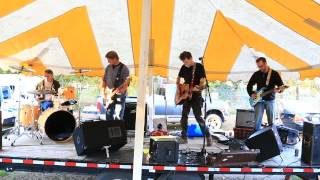 Angry Johnny and the Killbillies - Devil's Run - Tom's franks 2015