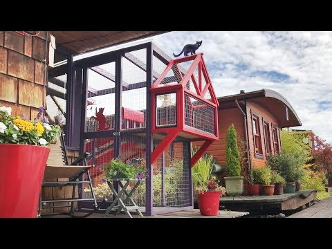 Catio Life:  CH CATS' HOUSEBOAT CATIO by Catio Spaces