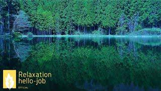 自律神経を整える音楽~【幸せのセロトニン】森と水の静かな時間で副交感神経を優位にしリラックス状態にする~ Quiet time of forest and water