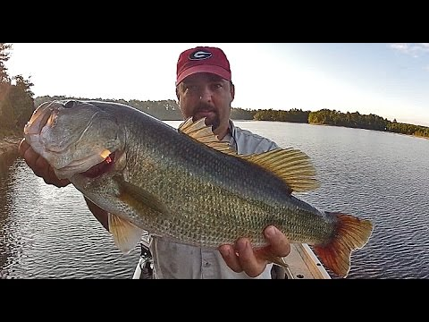 The Best all Around Rod for Bass Fishing
