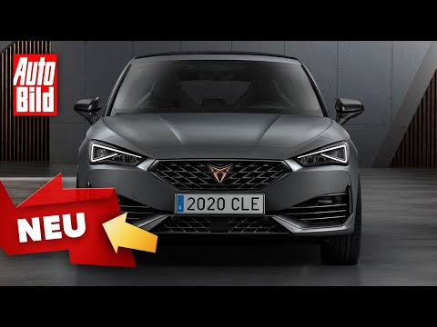 Cupra Leon (2020): Neuvorstellung - Sportwagen - Infos