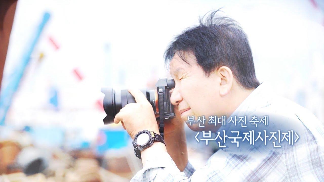 """부산 최대 사진 축제 """"부산국제사진제"""" 다시보기"""