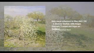 Mein Herze schwimmt im Blut, BWV 199