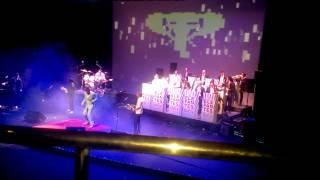 Los elefantes en concierto