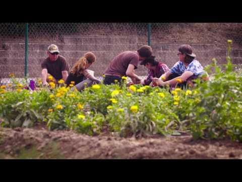 Cabrillo College Horticulture Program