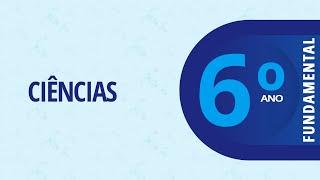 6° Ano – Ciências: Os Cinco Sentidos: A Visão – Parte 1 – 10/08/2020