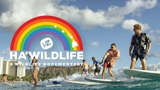 Ha'WildLife | A Wildlife Documentary