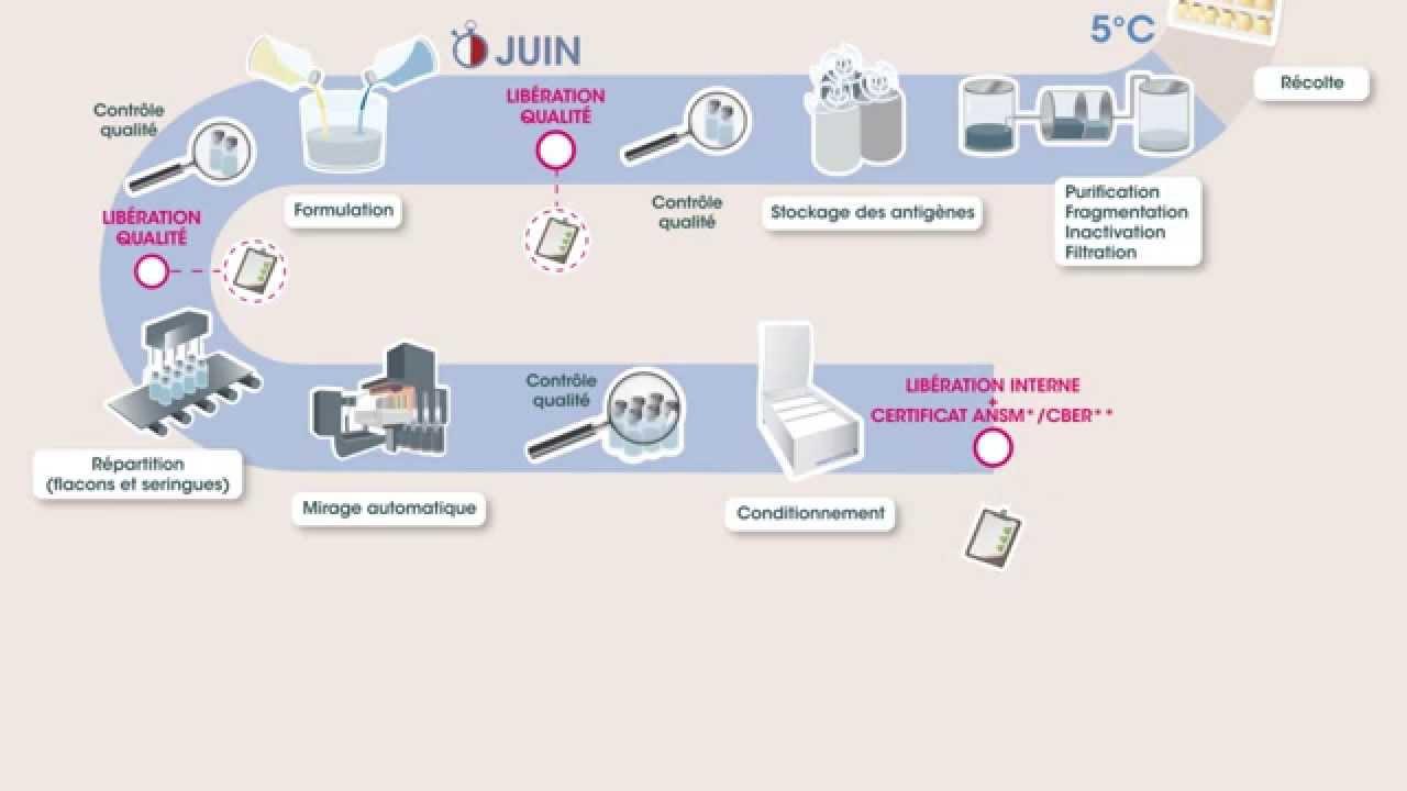 Vaccin contre la grippe - processus de fabrication pour l'hémisphère nord