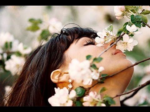 АРОМАТНЫЕ комнатные растения | Самые душистые цветы