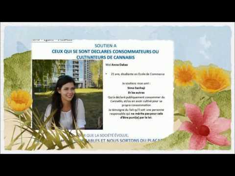 CANNABIS SOCIAL CLUB : UN CODE DE CONDUITE