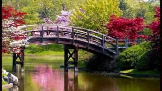 Vivaldi's Four Seasons - Spring (Part 1)