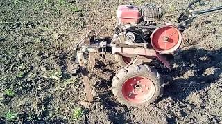 Выращивание картошки от А до Я.Борьба с сорняками и рыхление междурядий.