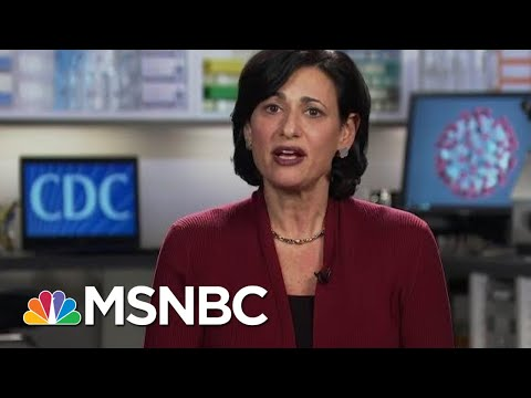 Why CDC Isn't Yet Ready To Green Light Travel For Those Already Vaccinated | Rachel Maddow | MSNBC