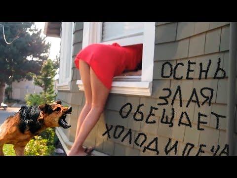 Диана промашкова счастье нервы cover скачать