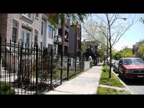 The 2900 block of North Damen Avenue: Everyone's selling in Hamlin Park