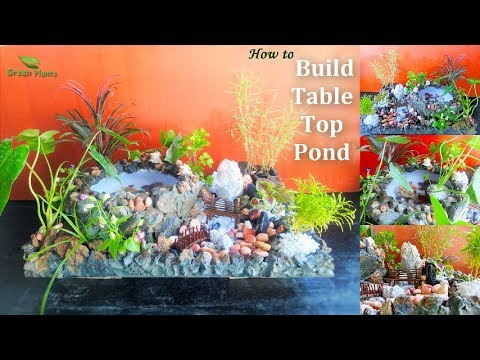 How to Build a Table Top Pond | How to Build a Small Fish Pond // GREN PLANTS