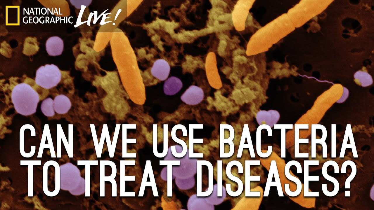 Can We Use Bacteria to Treat Diseases? | Nat Geo Live thumbnail