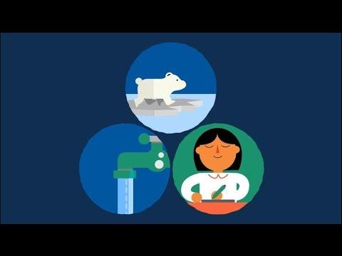 Cum să elimini toți paraziții din organism