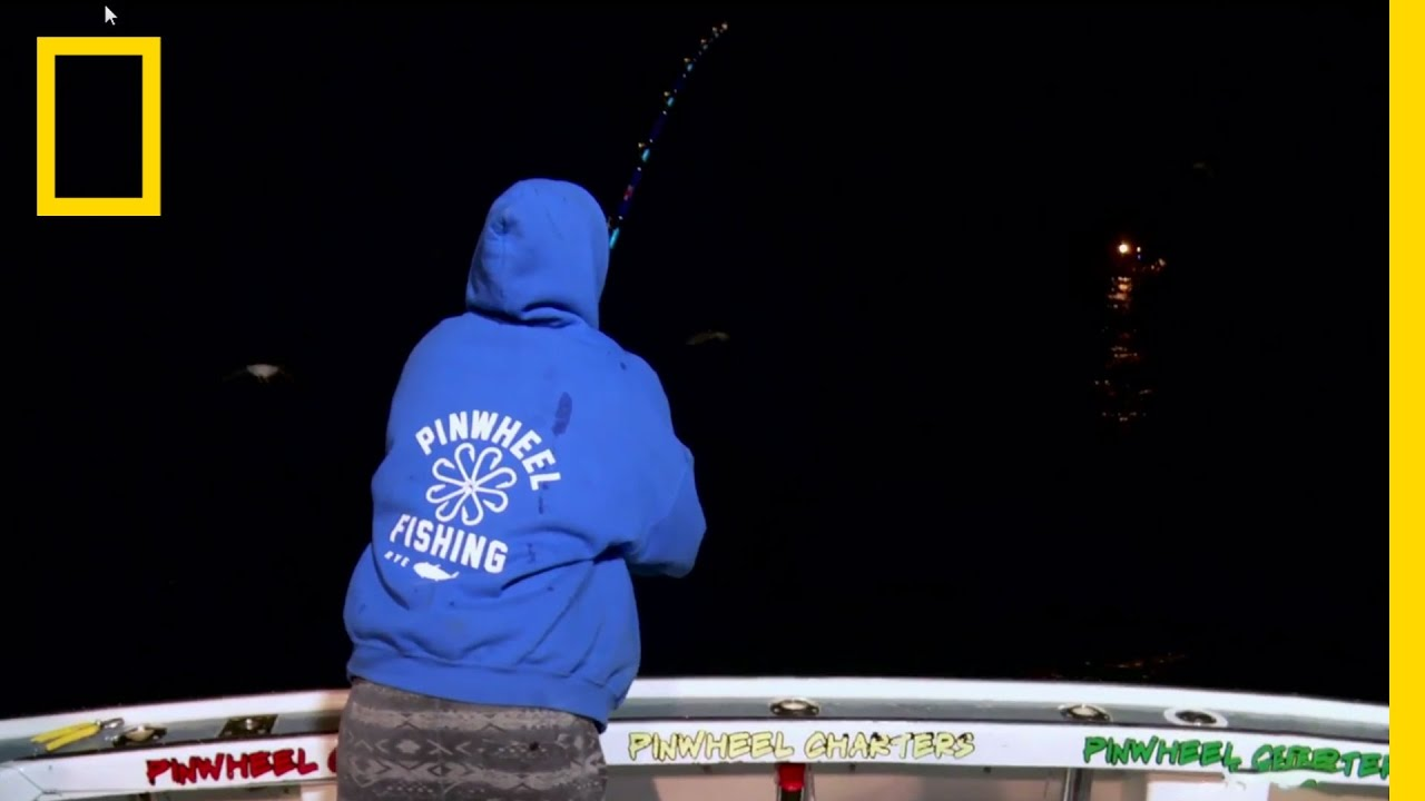 One Good Tuna Deserves Another | Wicked Tuna thumbnail
