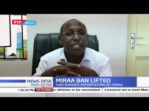 Miraa ban lifted: Miraa farmers express joy after Somalia lifted Miraa ban on Kenya