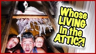 WHAT'S IN THE ATTIC?!!
