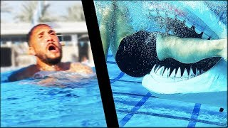 I Learned How To Survive A Shark Attack