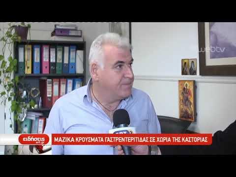 230 κρούσματα γαστρεντερίτιδας σε χωριά της Καστοριάς | 29/01/2019 | ΕΡΤ