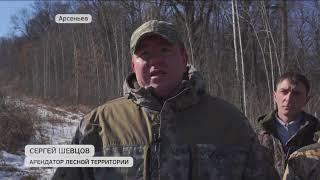 Казаки вышли на защиту леса в Приморье