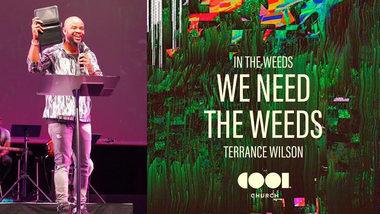 WE NEED THE WEEDS Image