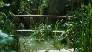 preview picture of video 'HOTEL ALTEA JARDIN DE LOS SENTIDOS'