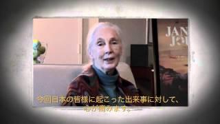 ジェーン・グドール博士から日本へのメッセージ