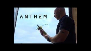 [Озвучено] Anthem игра - Кукурузный лабиринт BioWare
