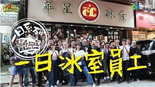 《一日系列第六十四集》香港行第二集一日華星冰室員工!邰哥究竟能不能錄取名店的員工呢?-一日冰室員工
