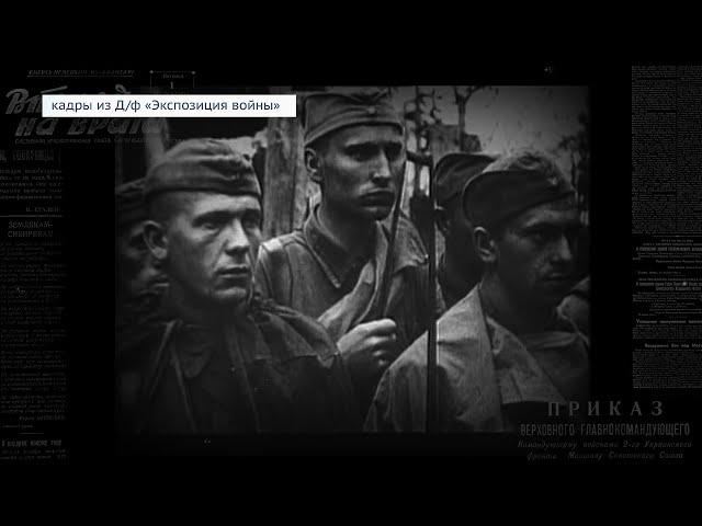 «Экспозиция войны»