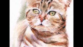 Cats' Cradle paintings by Jadwiga Sosnowska music for celtic harp by D W Solomons.wmv