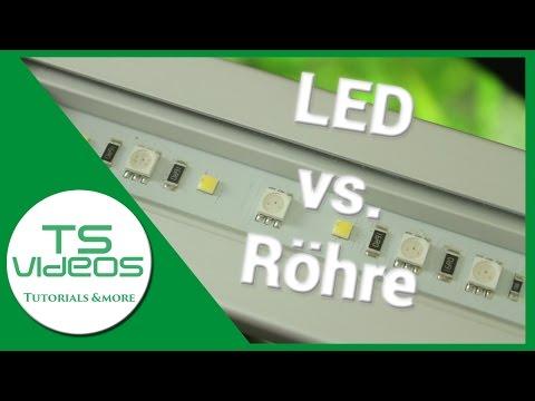 Aquarium Beleuchtung - Röhre vs. LED  Vor- und Nachteile - TSVideos