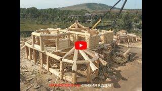VIP дом из кедра 450 m2  | Эксклюзивные кедровые дома | izkedradom.ru