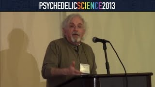 Ayahuasca, the Scientific Paradigm, and Shamanic Healing - Stephan Beyer