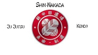 Shin-Nakada demo 2013
