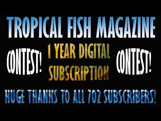 Tropical Fish Magazine Digital Subscription Contest!