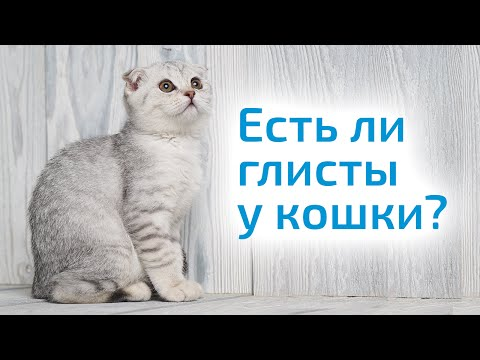 Костюм паразит metal gear solid как пользоваться
