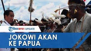Terkait Kerusuhan di Manokwari, Jokowi Dikabarkan akan ke Papua dalam Waktu Dekat