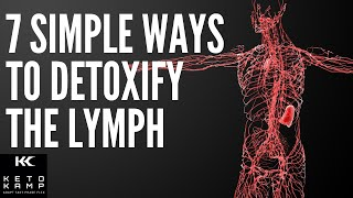 What is The Lymph System? | 7 Simple Ways to Cleanse and Detoxify The Lymphatic Glands