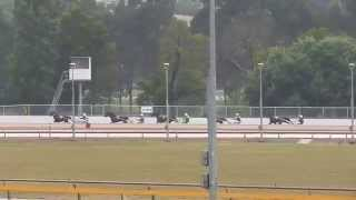 preview picture of video 'Warragul Harness Trials- Trial 4- February 14, 2015'