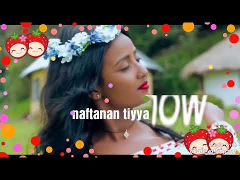 best fayisa furii oromo music 2019 youtube - смотреть онлайн на Hah Life