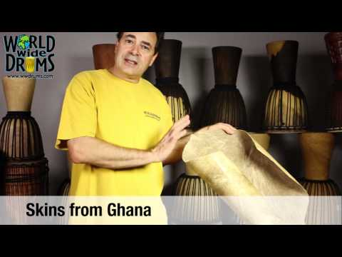 Selecting a Djembe Goat Skin