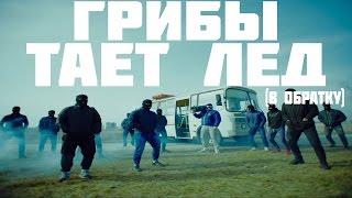 ПЕСНЯ НАОБОРОТ(РЕВЕНСИРОВАННАЯ) -ГРИБЫ-ТАЕТ ЛЁД(ГРИБЫ)