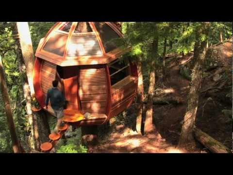 This Amazing Treehouse Is Hidden On Whistler Mountain
