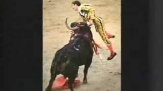 Matador Gets Gored thumbnail